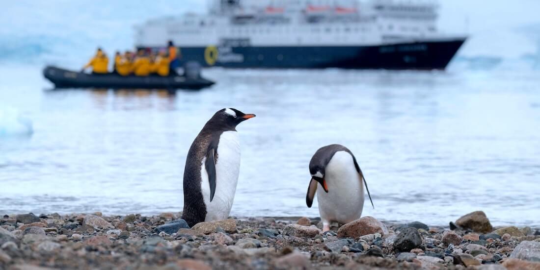 Nuevo-Estatuto-Chileno-Antartico