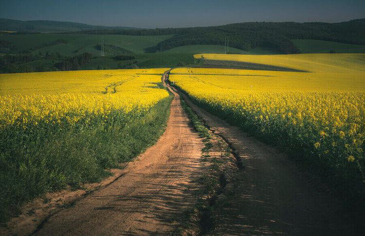 Medidas mínimas para subdividir un terreno